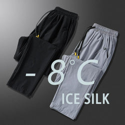 🔥Buy 1 Get 1 Free🔥 Ice Silk Fitness Running Stretch Pant