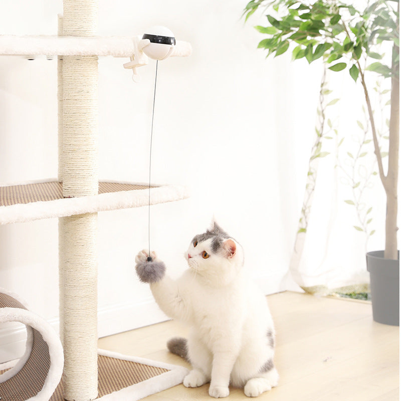 2020 NEW Electric Flutter Rotating Ball for Cat