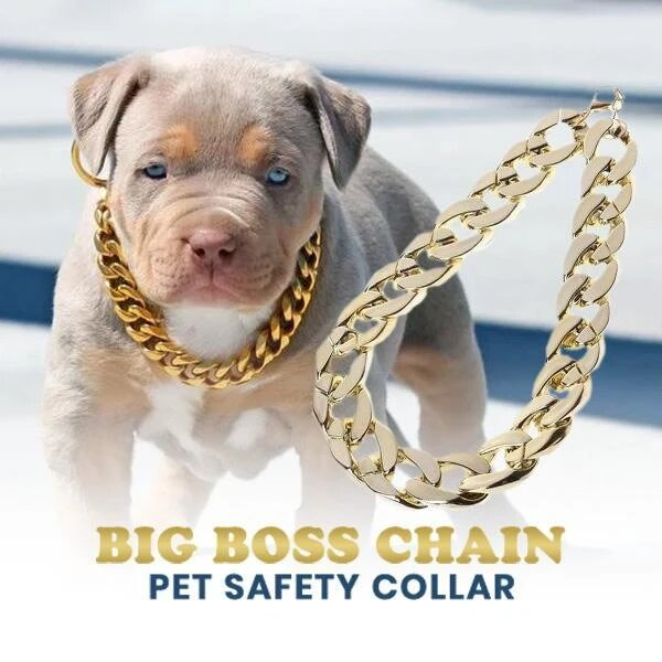 【Buy 1 Get 1 FREE】Thick Gold Chain Pets Safety Collar (Adjustable Length)