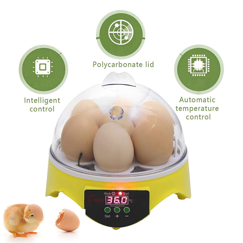 Mini Egg Hatcher - SUNCOO Egg Incubator with Temperature Control, Digital Poultry Hatching for Chickens Ducks Birds Small (7 Egg)