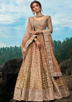Elegant Dark Beige Embroidered Net Sequins Lehenga Choli