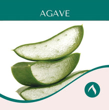 Load image into Gallery viewer, Agave