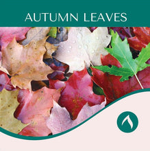 Load image into Gallery viewer, Autumn Leaves