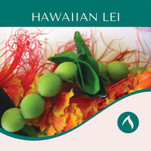 Load image into Gallery viewer, Hawaiian Lei