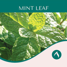 Load image into Gallery viewer, Mint Leaf