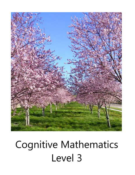 Cognitive Math Level 3