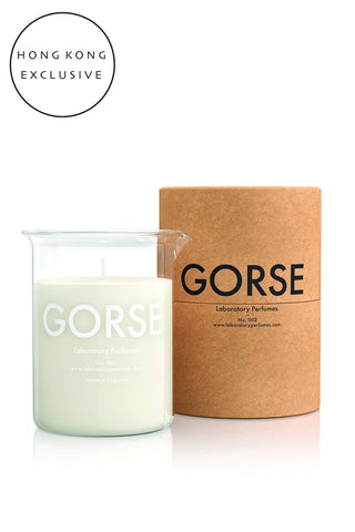 GORSE SCENTED CANDLE