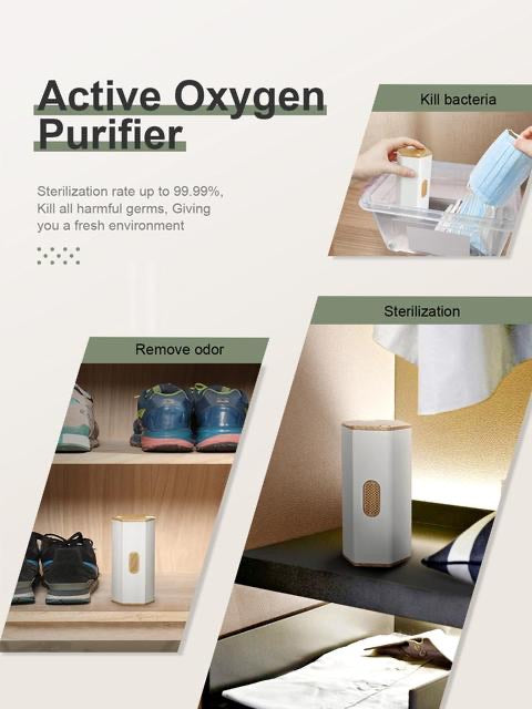 Portable Ionizer Air Purifier for Kitchen