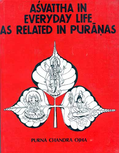 Asvattha in Everyday Life as Related in Puranas