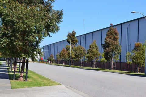 A photo featuring Dinsan Nursery's quality wholesale plants at Chifley Business Park, Melbourne.