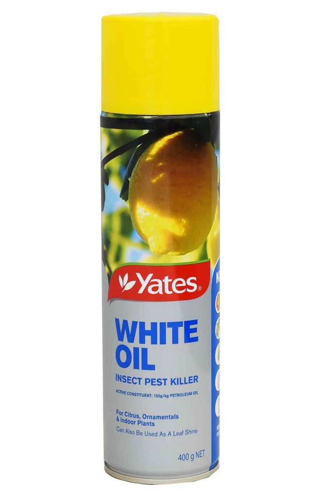 An Aerosol Spray Of Yates White Oil Insect Pest Killer
