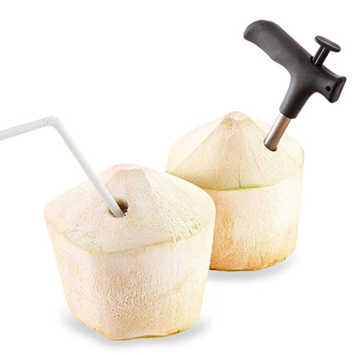 Stainless Steel Coconut Opener - Gadget Mansion