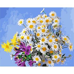 40*50CM Paint By Numbers-Warm Daisy
