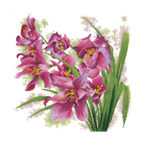 Orchid - 14CT Stamped Cross Stitch - 47*47cm