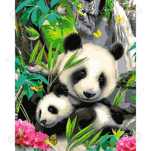 40*50CM Paint By Numbers-Two Pandas