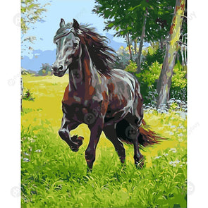 40*50CM Paint By Numbers-HandRunning Horse