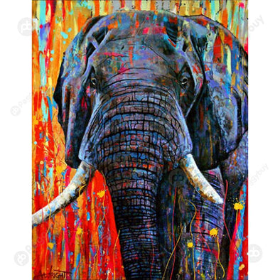 40*50CM Paint By Numbers-Male Elephant