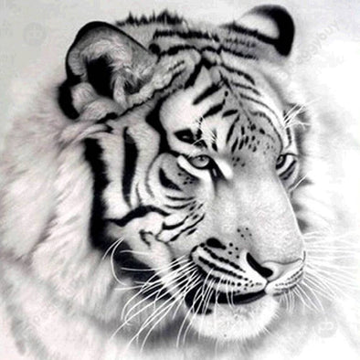 30*30CM Round Drill Diamond Painting-Tiger
