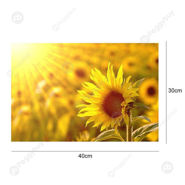 40*30CM Round Drill Diamond Painting-Sunflower