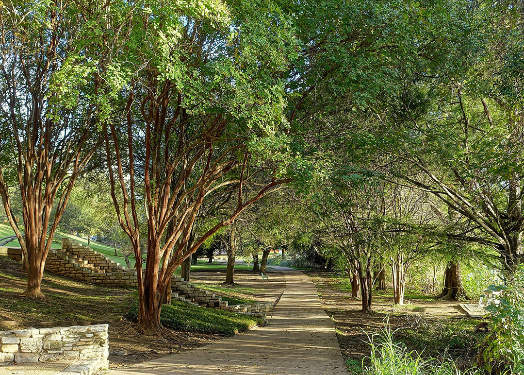 10 Best Bike Trails in Texas