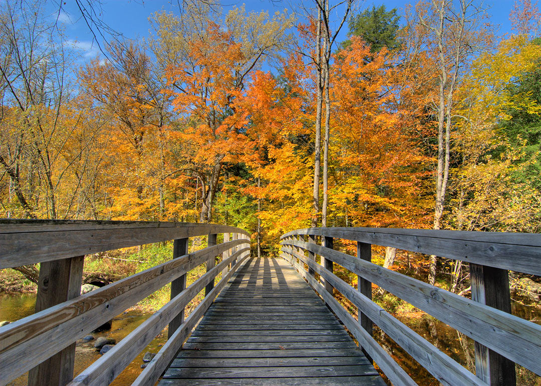 34 Best Bike Trails in Pennsylvania