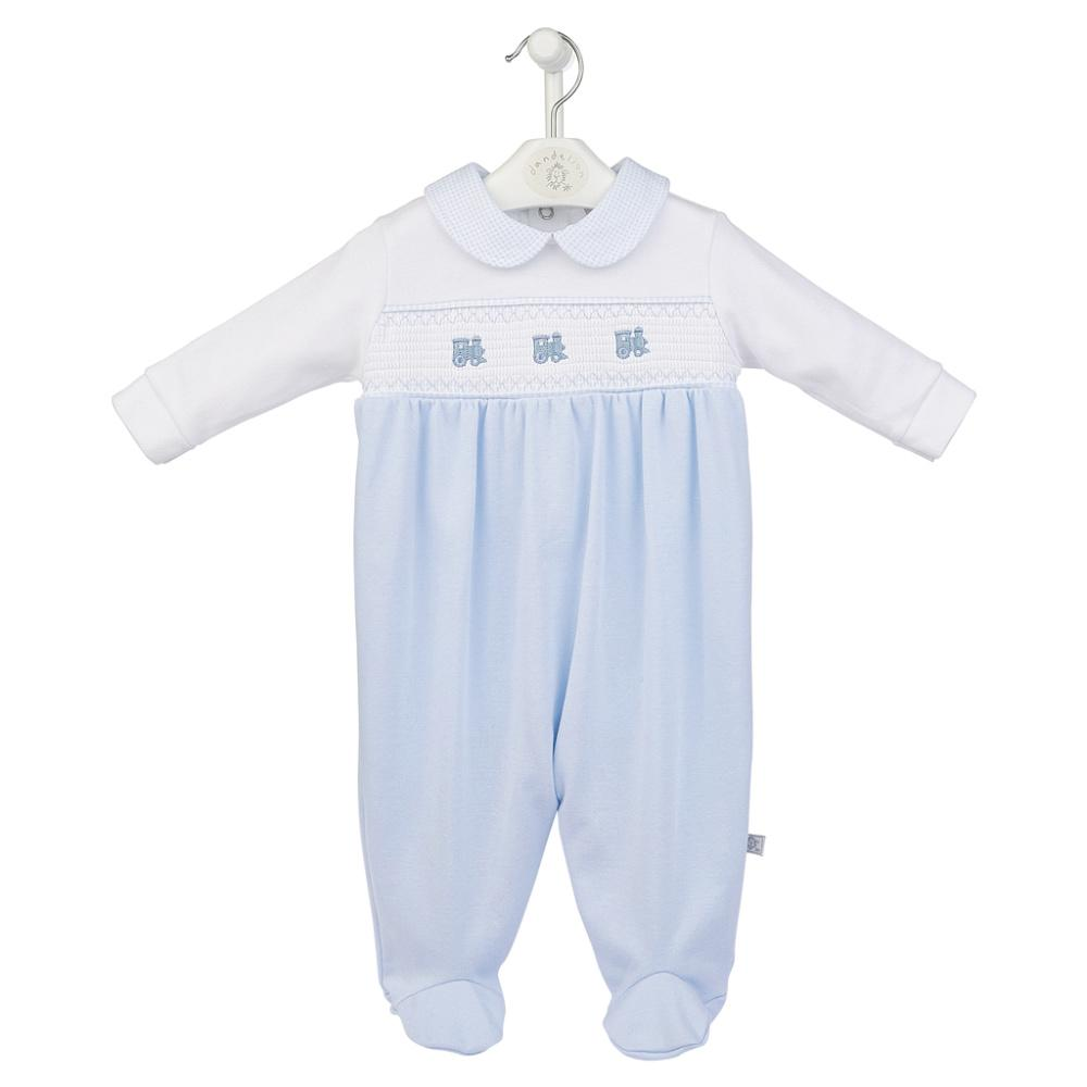 dandelion trains babygrow blue