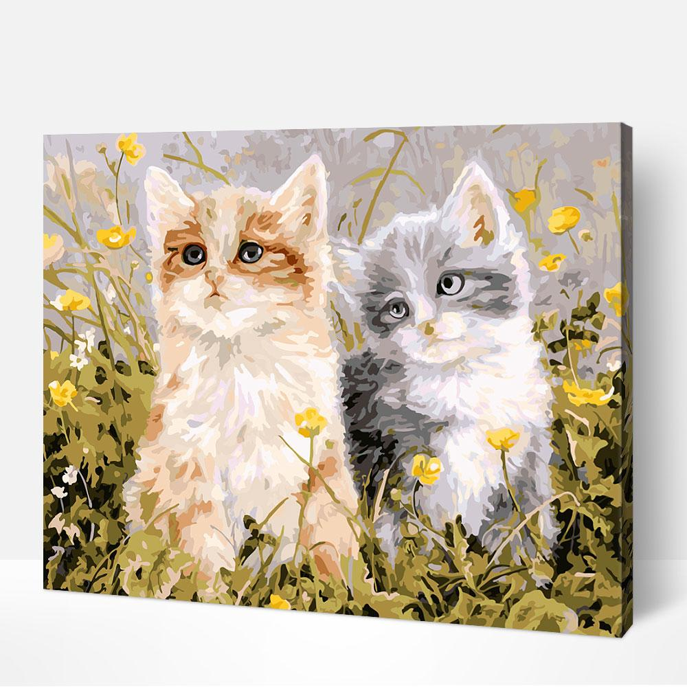Two Cats Peering - Paint By Numbers Kit For Adult