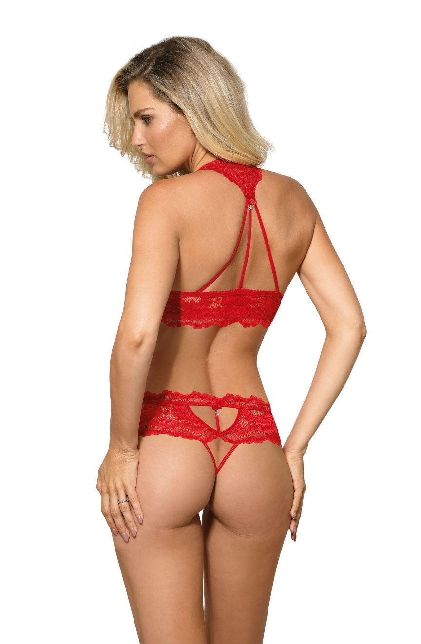 Roza Sefia Push Up Bra Red
