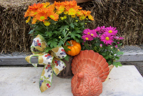 Thanksgiving Harvest Décor