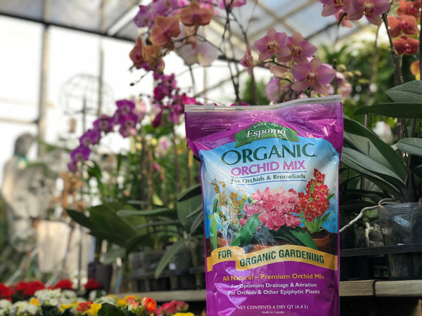 Organic Orchid Potting Mix