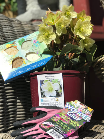 Mother's Day Gardening Package
