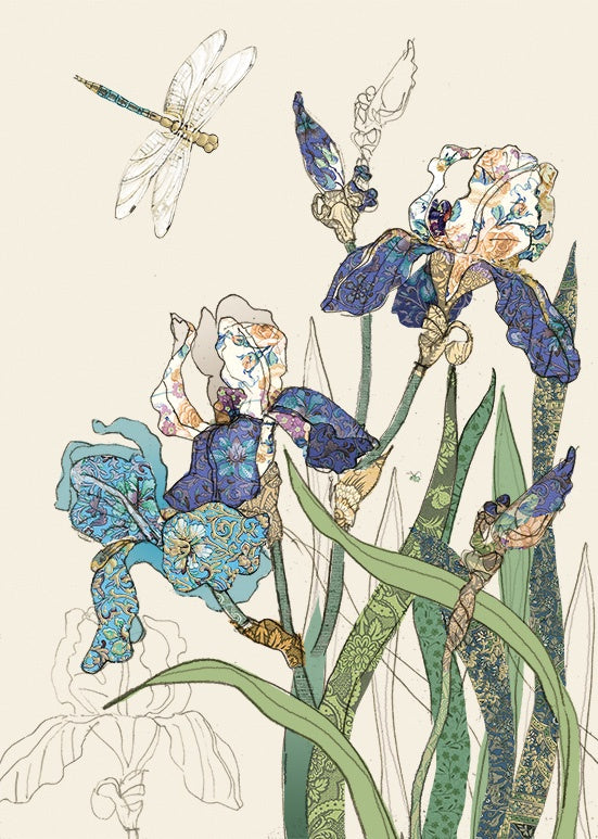 B004-Card - Bearded Irises