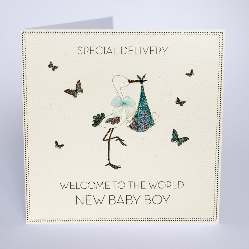 BLY31 - Special Delivery New Baby Boy
