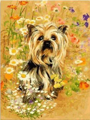 yorkie paint by numbers kit