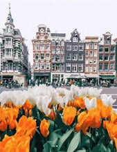 Load image into Gallery viewer, paint by numbers amsterdam tulips