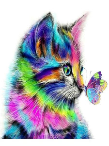 paint by numbers cat butterfly pop art