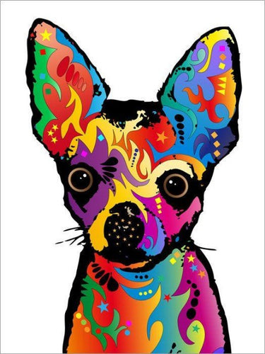 paint by numbers colorful chihuahua