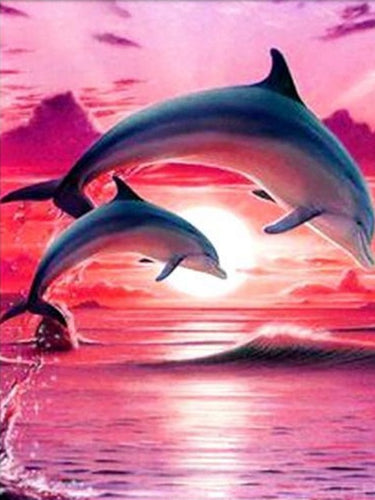 paint by numbers dolphins in sunset