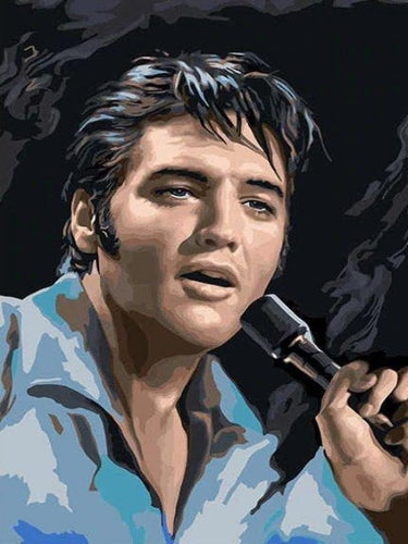 paint by numbers elvis presley