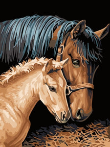 paint by numbers horse and foal