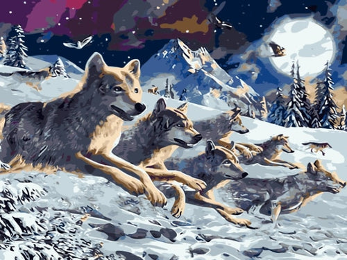 paint by numbers pack of wolves