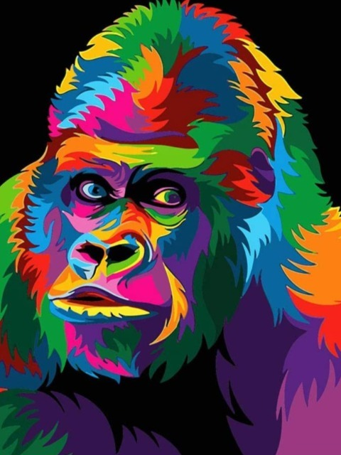 paint by numbers popart colorful gorilla