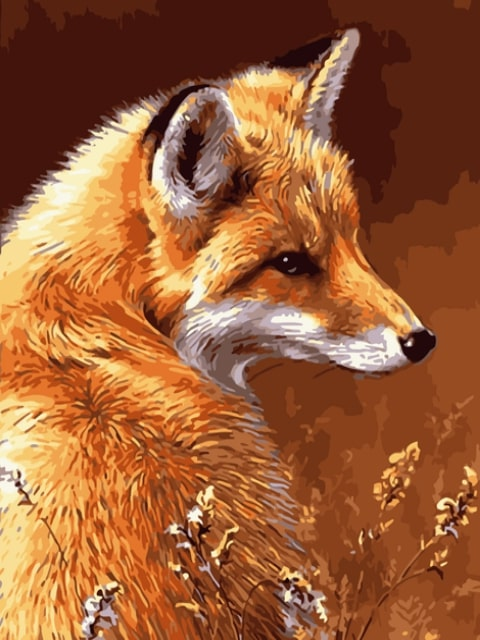 paint by numbers red fox