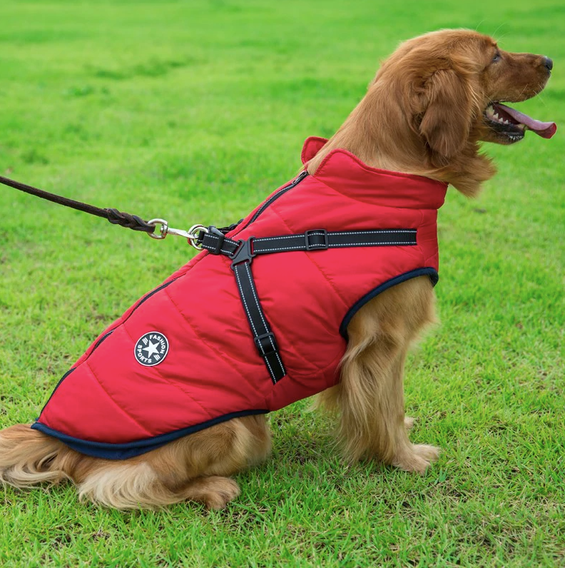 Jacket Harness