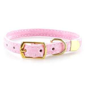 Exclusive Cat Collar