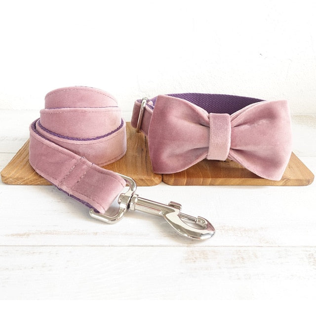 Bow Collar With Leash