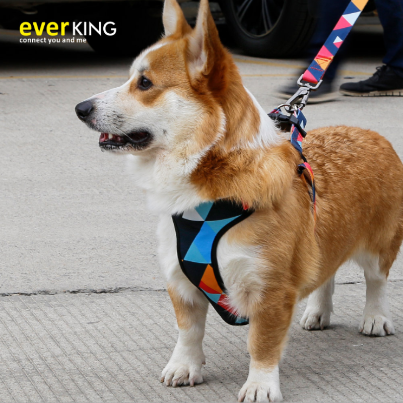 EVERKING Padded Dog Harness