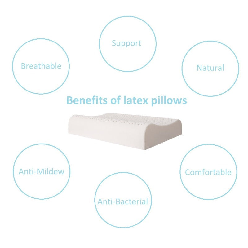 Pure Latex Pillow General