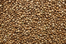 Load image into Gallery viewer, Hemp Seeds - $11.99 per lb