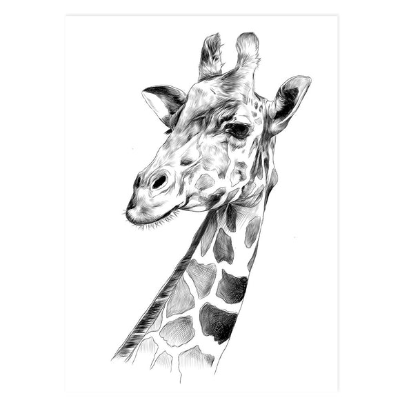 Gerry the giraffe - Wall Print